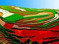 云南六大片区最新最具特色的旅游攻略