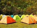 野外露营带点什么好?