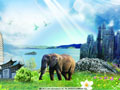 云南参展团在美丽中国-港澳主题旅游宣传推广活动上走俏