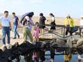 克拉玛依打造旅游新业态